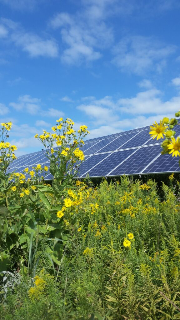 North Campus Solar Panels